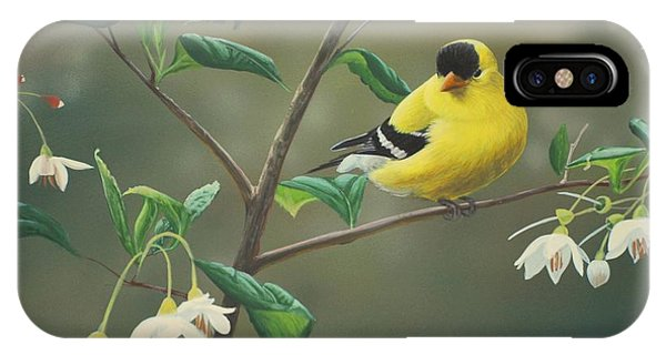IPhone Case featuring the painting Goldfinch And Snowbells by Peter Mathios
