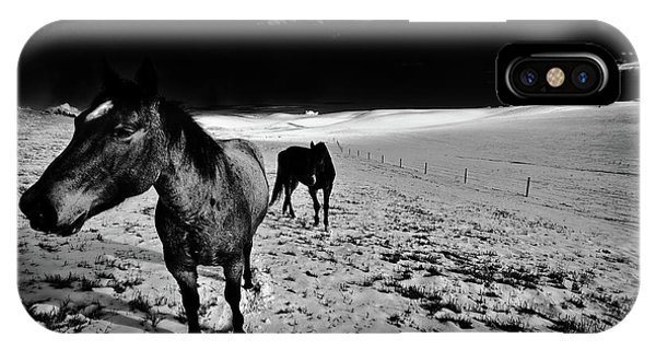 iPhone Case - Horses On The Palouse by David Patterson