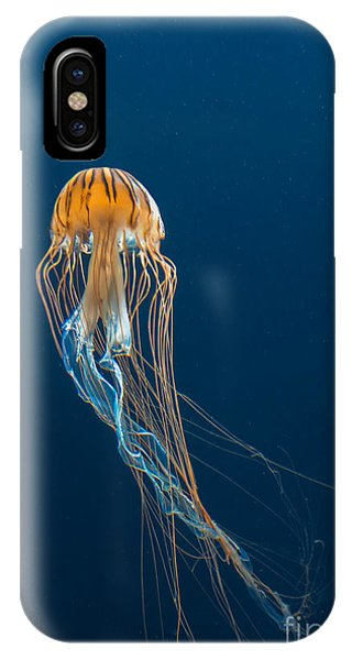 Jellyfish Phone Case by Ileysen