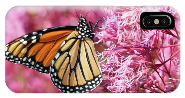 IPhone Case featuring the photograph Monarch Butterfly by Debbie Stahre