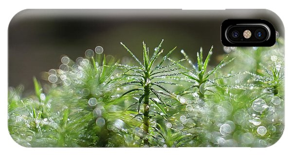 IPhone Case featuring the pyrography Moss by Magnus Haellquist