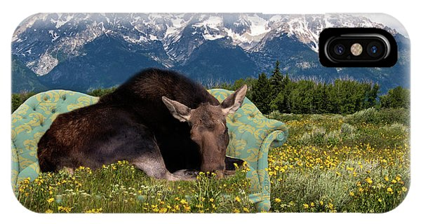 Nap Time In The Tetons IPhone Case