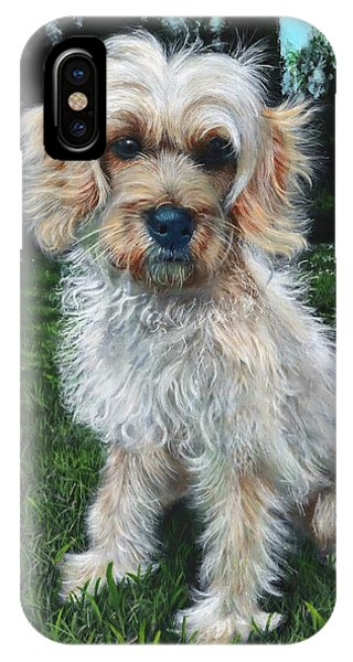 Portrait Of Toffee IPhone Case