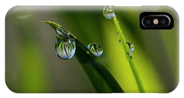 Rain Drops On Grass IPhone Case