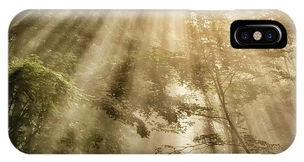 iPhone Case -  Rays Of Light In Forest by Thomas R Fletcher