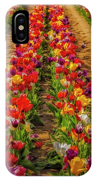 iPhone Case - Rows Of Tulips  by Susan Candelario