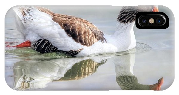 Pomeranian iPhone Case - Saddleback Pomeranian Goose by Donna Kennedy