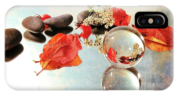 IPhone Case featuring the photograph Seasons In A Bubble by Randi Grace Nilsberg