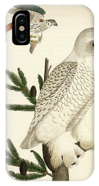 1. Snow Owl. 2. Male Sparrow-hawk. IPhone Case