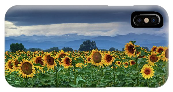 IPhone Case featuring the photograph Sunflowers Under A Stormy Sky by John De Bord