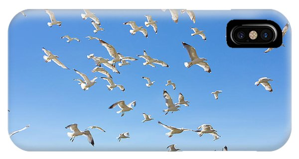 Motion Blur iPhone Case - Swarm Of Sea Gulls Flying Close To The by Smoxx