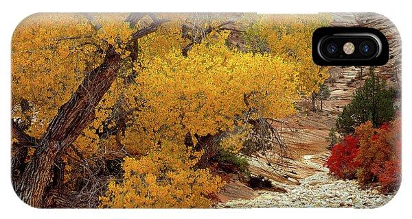 Zion National Park Autumn IPhone Case
