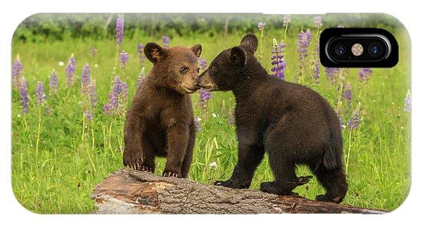 Usa, Minnesota, Minnesota Wildlife Phone Case by Jaynes Gallery