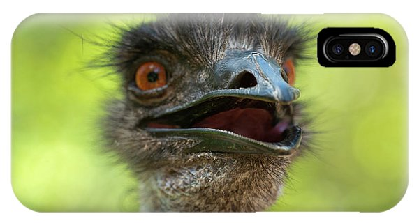 Australian Emu Outdoors IPhone Case