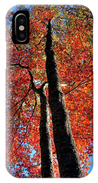 IPhone Case featuring the photograph Autumn Reds by David Patterson