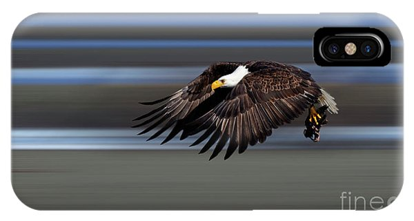 iPhone Case - Bald Eagle In Flight by Bob Christopher