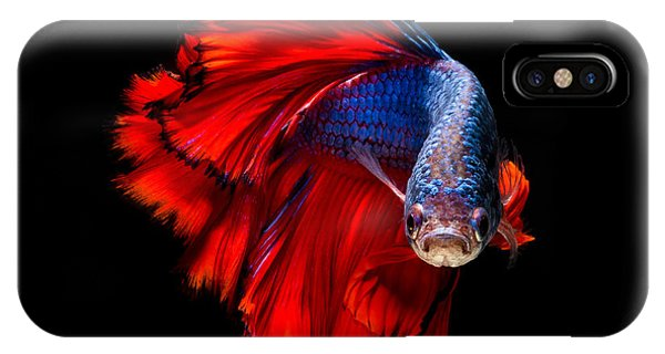 Open iPhone Case - Colourful Betta Fish,siamese Fighting by Nuamfolio