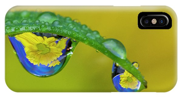 iPhone Case - Dew Reflecting Flowers From Asiatic Lily by Darrell Gulin
