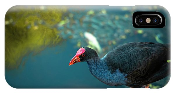 IPhone Case featuring the photograph Purple Swamphen by Rob D Imagery