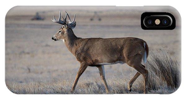 Rocky Mountain Deer IPhone Case