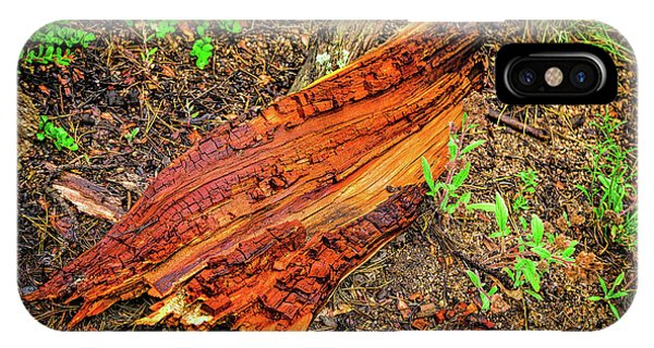 IPhone Case featuring the photograph Wet Wood by Jon Burch Photography