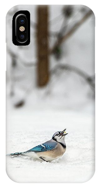 2019 First Snow Fall IPhone Case