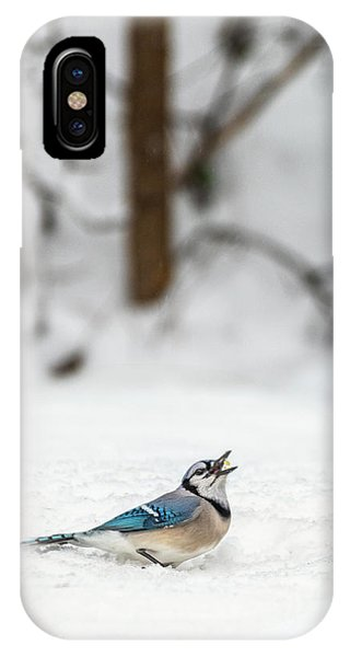IPhone Case featuring the photograph 2019 First Snow Fall by Cindy Lark Hartman
