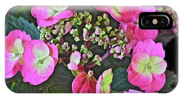 2019 June At The Gardens Tuff Stuff Hydrangea IPhone Case