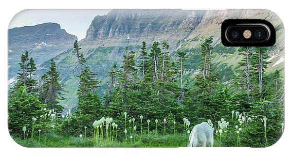 Usa, Montana, Glacier National Park Phone Case by Jaynes Gallery