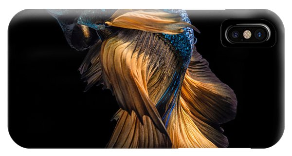 Fins iPhone Case - Colourful Betta Fish,siamese Fighting by Nuamfolio