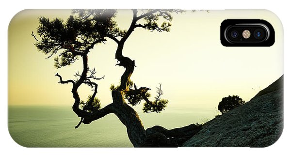 Discovery iPhone Case - Tree And Sea At Sunset. Crimea by Oleg Gekman