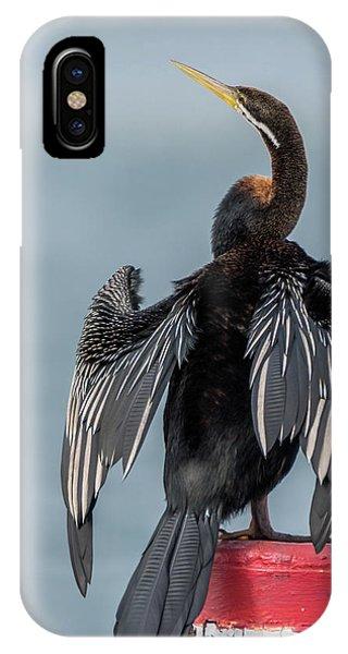 Australasian Darter IPhone Case