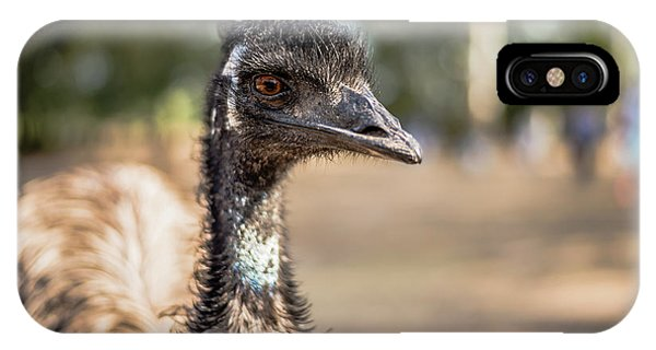 IPhone Case featuring the photograph Emu By Itself Outdoors During The Daytime by Rob D Imagery