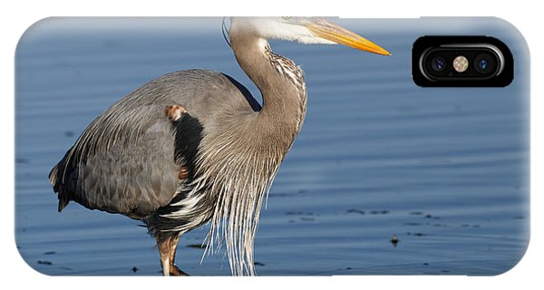 IPhone Case featuring the photograph Great Blue Heron by Sue Harper