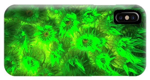 Barrier Reef iPhone Case - Night Dive At Barrier Reef Near Saint by Stuart Westmorland