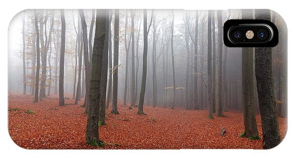 iPhone Case - Beech Forest In Autumn by Michal Boubin