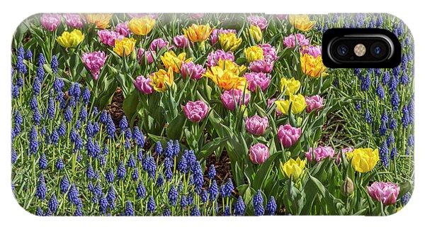 Tulips, Skagit Valley Tulip Festival Phone Case by Adam Jones