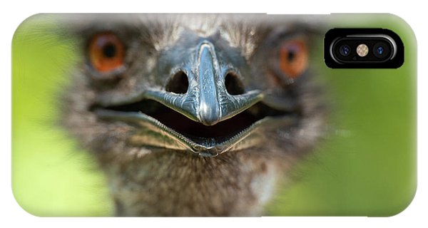 IPhone Case featuring the photograph Australian Emu Outdoors by Rob D Imagery