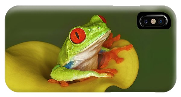 Red-eyed Tree Frog Phone Case by Adam Jones