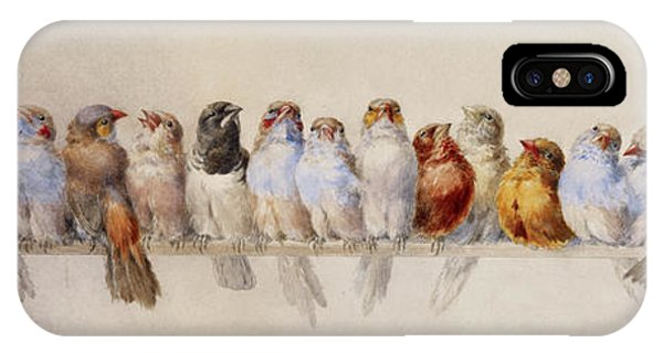 A Perch Of Birds  IPhone Case