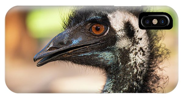 IPhone Case featuring the photograph Emu By Itself Outdoors During The Daytime. by Rob D Imagery