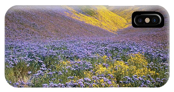 Usa, California, Carrizo Plain National Phone Case by Charles Gurche