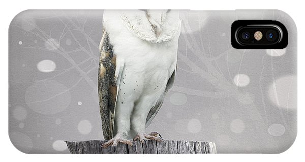 Grey Background iPhone Case - A Beautiful Barn Owl Above A Trunk With by Valentina Photos