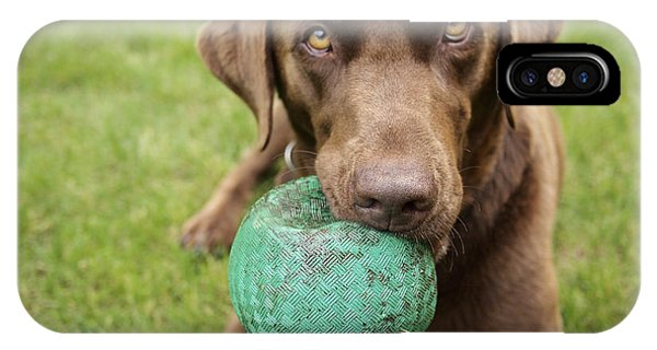 Eye Ball iPhone Case - A Chocolate Labrador Holds A Green Ball by John Kershner