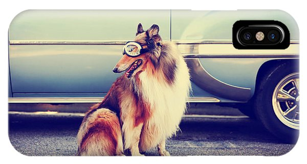 Small iPhone Case - A Collie Posing For The Camera In Front by Annette Shaff
