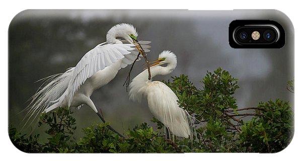 A Couple Of Birds IPhone Case