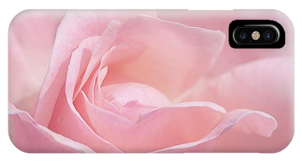 A Delicate Pink Rose IPhone Case