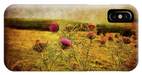IPhone Case featuring the photograph A Field Covered With Mist by Milena Ilieva