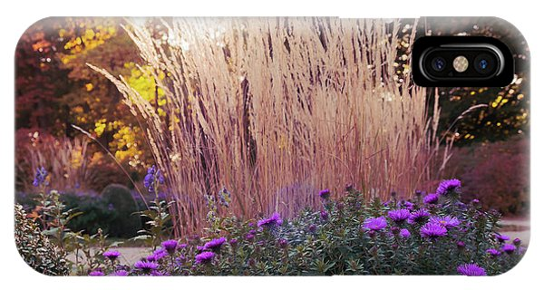 A Flower Bed In The Autumn Park IPhone Case