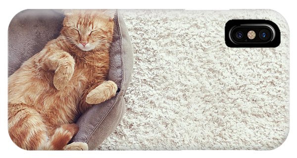 Cute iPhone Case - A Ginger Cat Sleeps In His Soft Cozy by Alena Ozerova